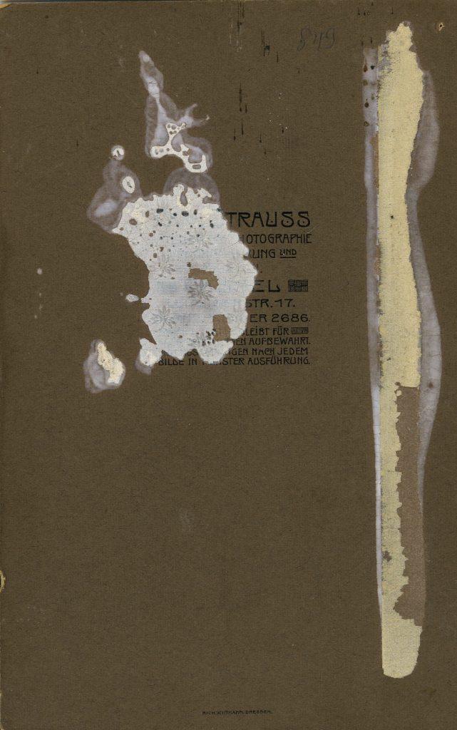 Carl Strauss - Cassel